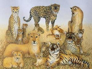 The Big Cats by Pat Scott