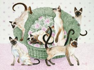We are Siamese If You Please by Pat Scott