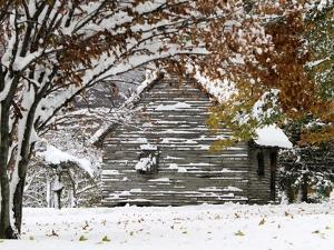October Snow by Pat Wellenbach