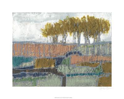 Patchwork Landscape II-Jennifer Goldberger-Limited Edition