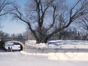 Paterson Creek Along the Rideau Canal, Ottawa, Ontario, Canada