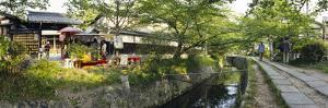 Path Along a Canal, Philosopher's Walk, Kyoto City, Kyoto Prefecture, Japan