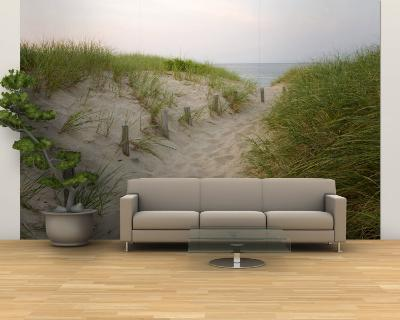 Path at Head of the Meadow Beach, Cape Cod National Seashore, Massachusetts, USA-Jerry & Marcy Monkman-Wall Mural – Large