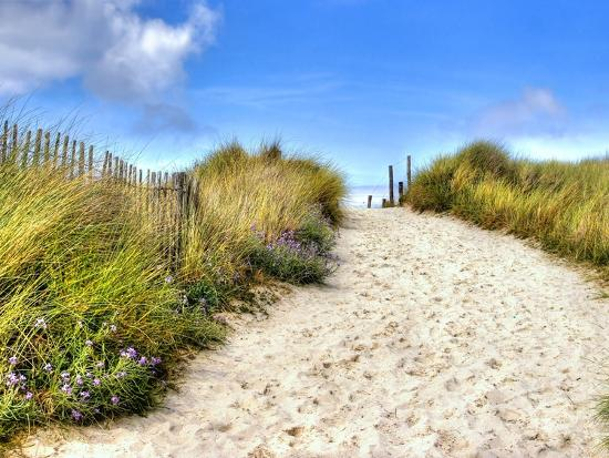 Path in the Dunes Going to the Seaside-Chantal de Bruijne-Photographic Print