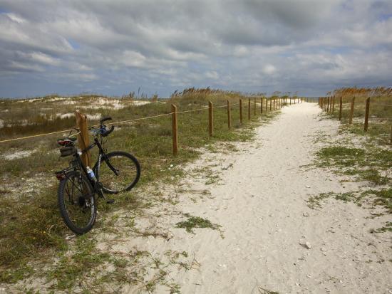 Path Leads to the Beach at St. George's Island, Florida-Stephen Alvarez-Photographic Print