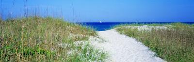 Path to Beach, Venice, Florida, USA--Photographic Print