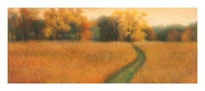 Path to the Woods-David Wander-Art Print