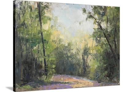 Path-Elissa Gore-Stretched Canvas Print