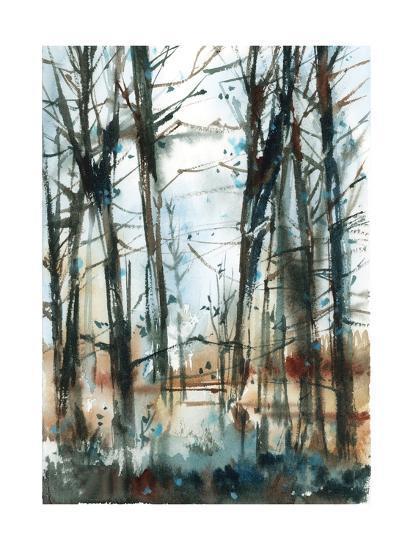 Path-Sophia Rodionov-Art Print