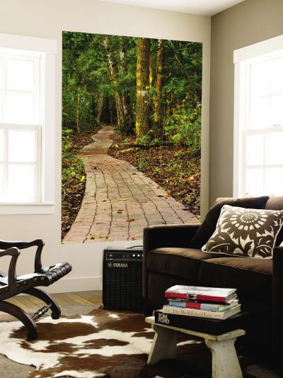 Pathway Leading Through Trees-Alfredo Maiquez-Wall Mural