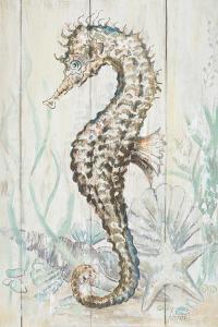 Antique Sea Horse II by Patrcia Pinto