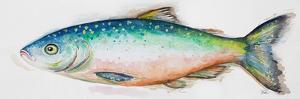 Watercolor Fish I by Patrcia Pinto