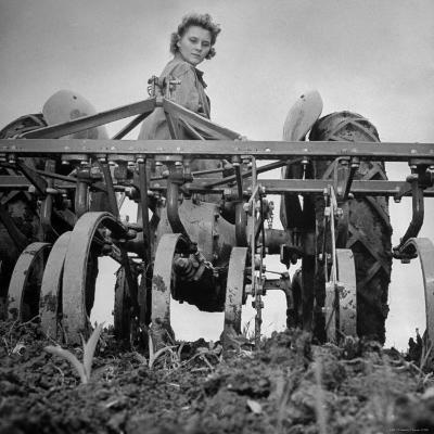 Patricia Colleen Altree Harrowing a Corn Field-J^ R^ Eyerman-Photographic Print