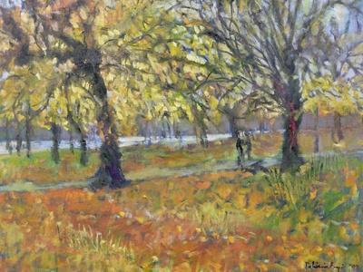 November in Hyde Park, 1997