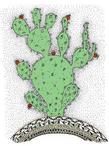 Cactus by Patricia Pino
