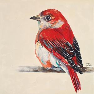 Baby Red Bird II by Patricia Pinto