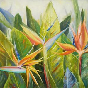 Bird of Paradise I by Patricia Pinto