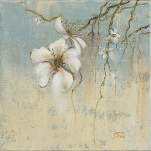 Cherry Blossom I by Patricia Pinto