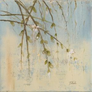 Cherry Blossom II by Patricia Pinto