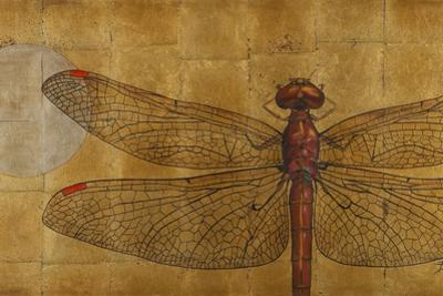 Dragonfly on Gold by Patricia Pinto