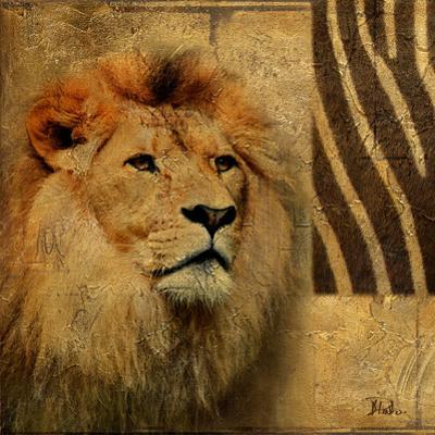 Elegant Safari II (Lion) by Patricia Pinto