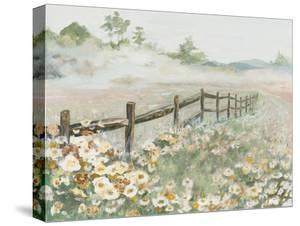 Fence with Flowers by Patricia Pinto