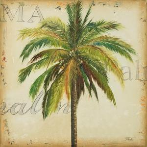 La Palma I by Patricia Pinto