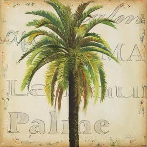 La Palma III by Patricia Pinto