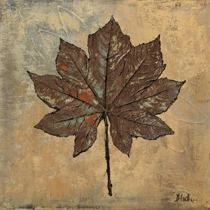 Maple III by Patricia Pinto