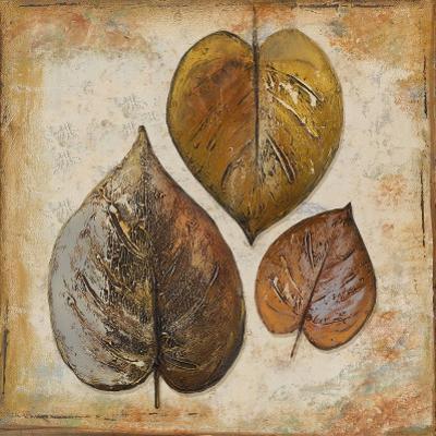 Natural Leaves II