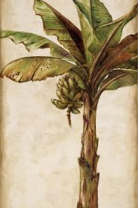 Tropic Banana II by Patricia Pinto
