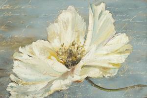 White Peony by Patricia Pinto