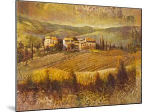 Chianti Land I by Patrick