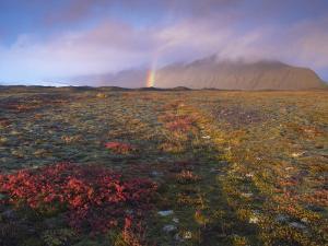 Autumn Colours and Rainbow over Illuklettar Near Skaftafellsjokull Glacier Seen in the Distance by Patrick Dieudonne