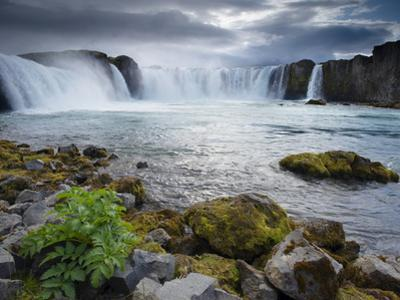 Godafoss Waterfall (Fall of the Gods), Between Akureyri and Myvatn, (Nordurland), Iceland by Patrick Dieudonne