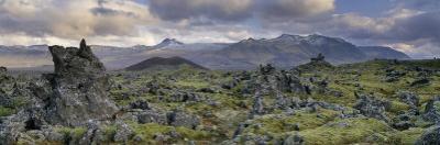 Lava Fields, Snaefellsnes Peninsula, Iceland, Polar Regions by Patrick Dieudonne