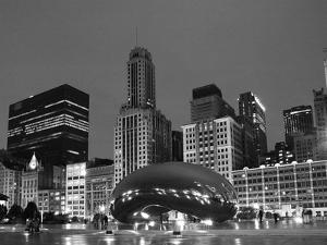 Chicago  Black &White by Patrick  J^ Warneka