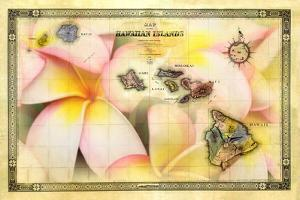 A 1876 Centennial Map of the Hawaiian Islands with Artwork of a Plumeria Flower by Patrick McFeeley