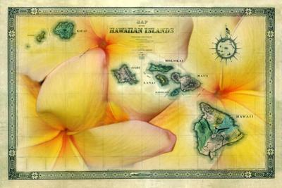 A 1876 Centennial Map of the Hawaiian Islands with Artwork of a Yellow Plumeria Flower by Patrick McFeeley