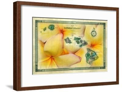 A 1876 Centennial Map of the Hawaiian Islands with Artwork of a Yellow Plumeria Flower