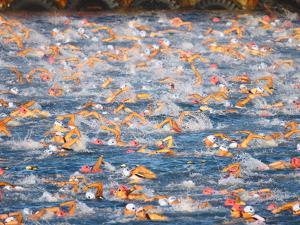 A Sea Full of Swimmers Competing in the Ironman Triathlon by Patrick McFeeley