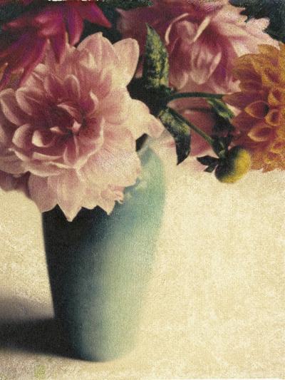 Patrick's Dahlias-Jennifer Kennard-Photographic Print
