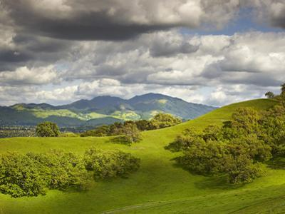 Billowing Cumulus Clouds Build Up on a Spring Afternoon Following a Storm, Mount Diablo, California by Patrick Smith