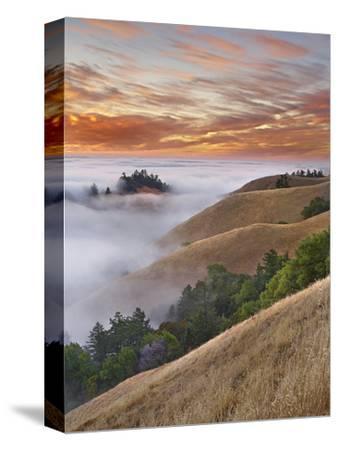 Fog Bank over San Francisco Bay Viewed from Mt. Tamalpais, California, USA