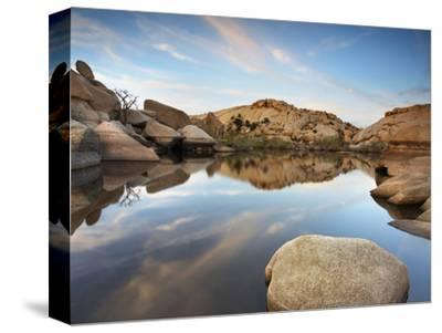Oasis in Joshua Tree National Park, California, USA