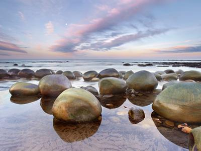 Sandstone Concretions, Bowling Ball Beach, Mendocino County, California, USA by Patrick Smith