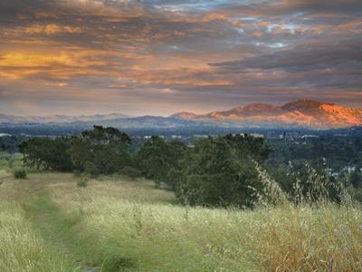 Sunset Spotlighting Mt. Diablo Taken From The Hills Above Walnut Creek And Pleasant Hill by Patrick Smith