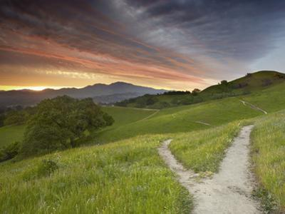Trails, Mt. Diablo Near Walnut Creek, Central California, USA by Patrick Smith