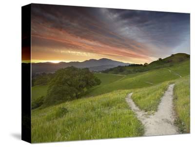 Trails, Mt. Diablo Near Walnut Creek, Central California, USA