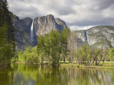 Yosemite Falls and the Merced River, Yosemite National Park, California, USA by Patrick Smith